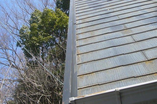 屋根 カラーベスト 苔