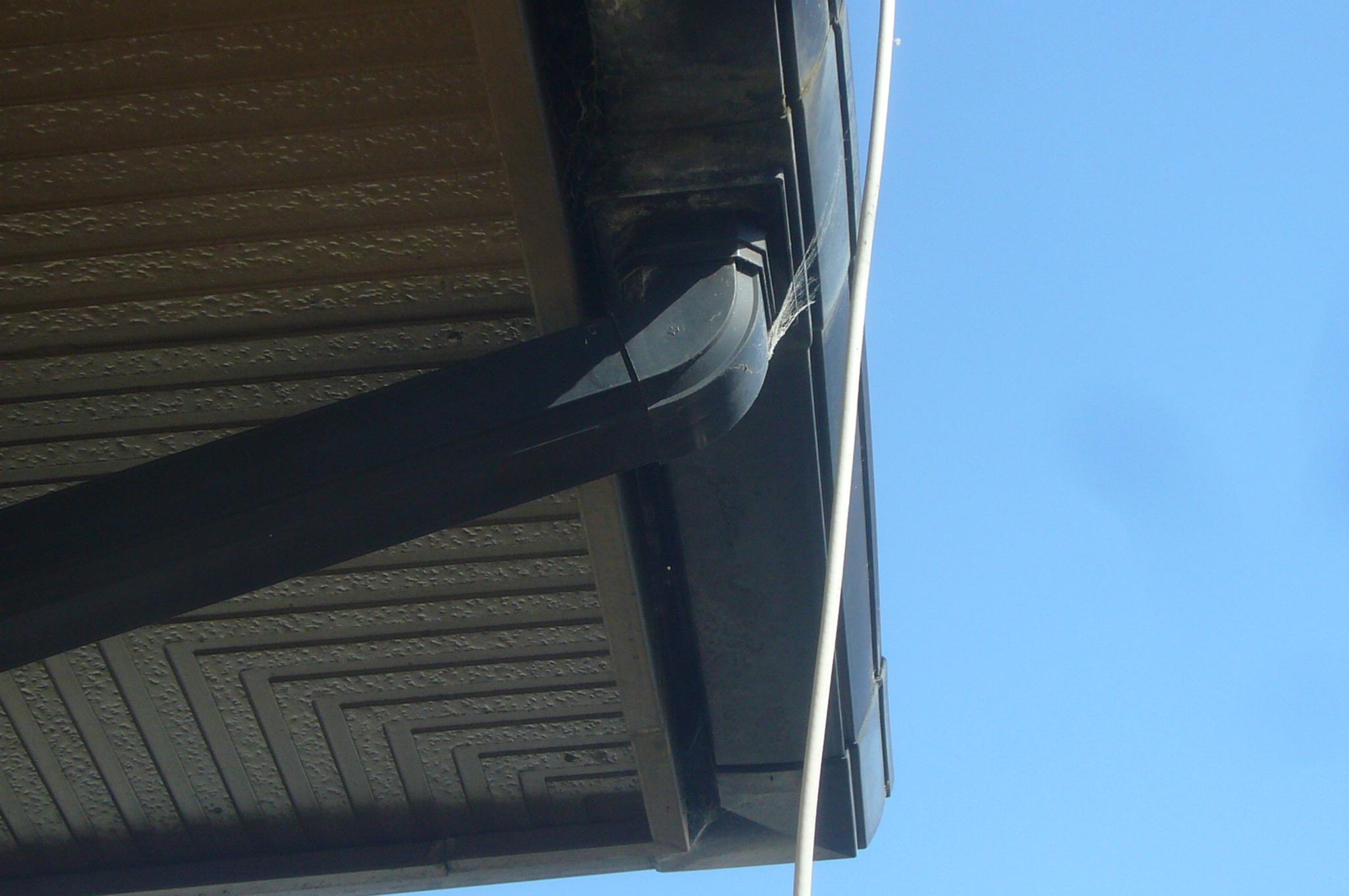 軒樋の点検