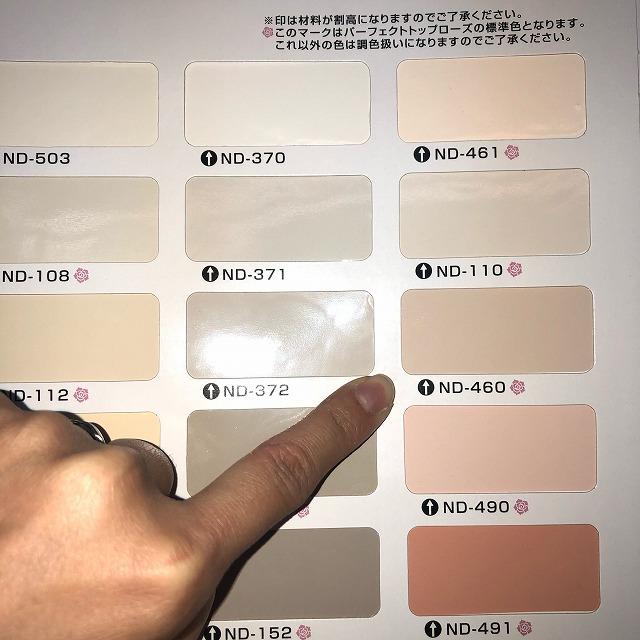 日本ペイント ニッペ 標準使用色