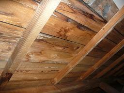 屋根裏雨漏り
