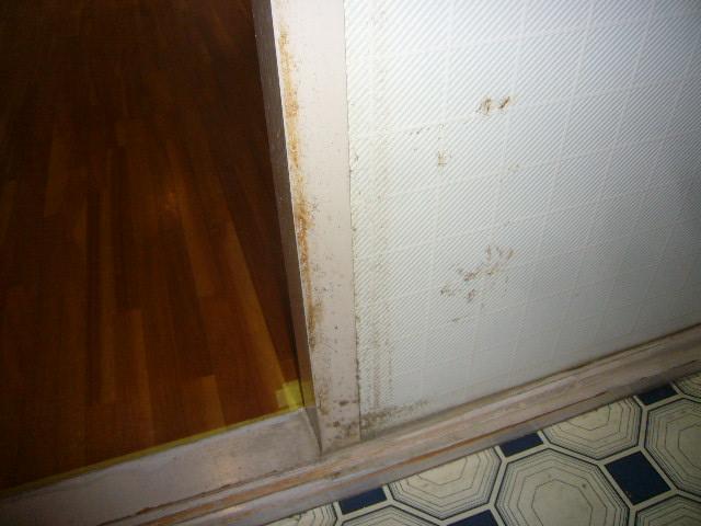 壁クロス汚れ