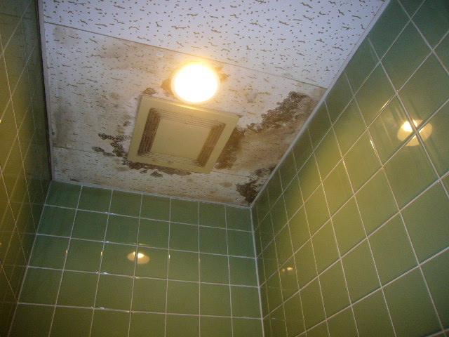 トイレの天井から雨漏り跡