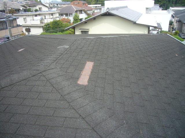 大屋根瓦剥離
