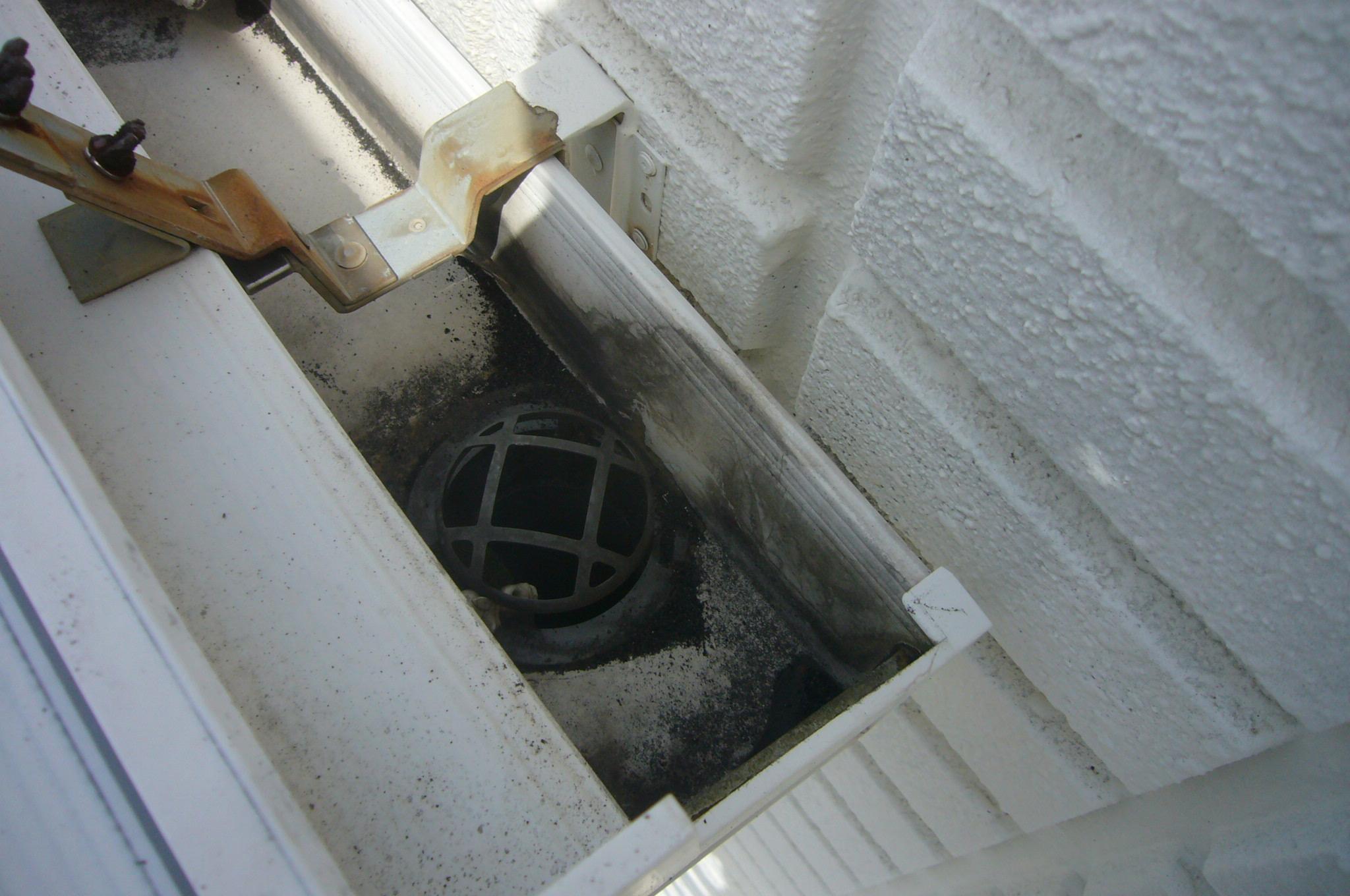 軒樋排水口
